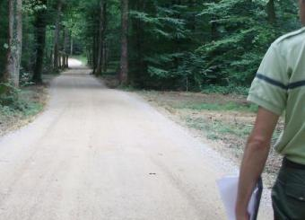 Chemin crée par traitement du sol au liant routier